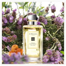 the fragrant man jo malone amber lavender