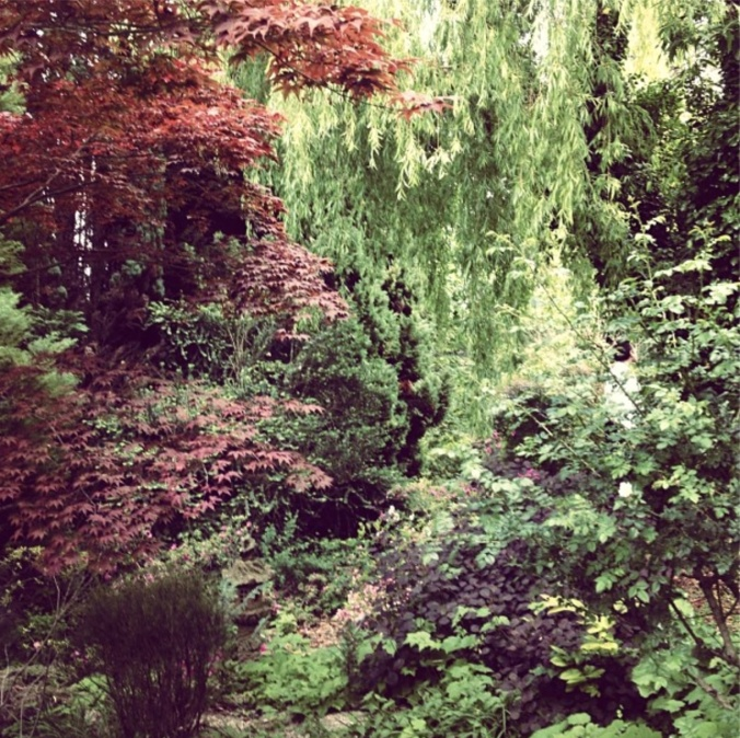 A garden in Grasse.  Photo: Saskia Havekes