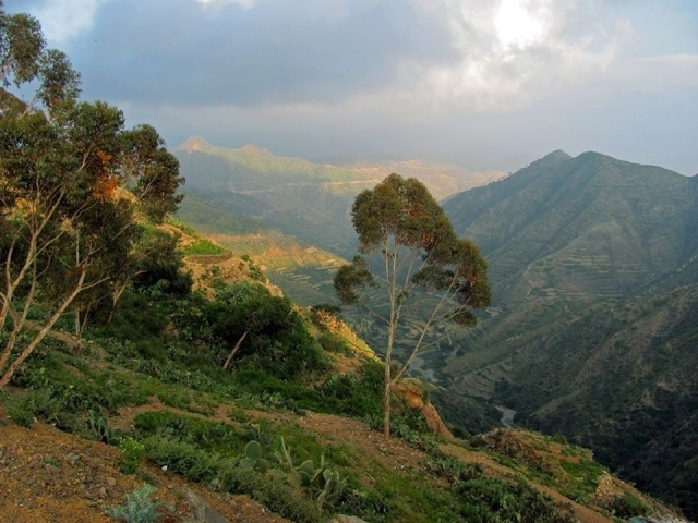 Chapter 1 - The mountains of Eritrea
