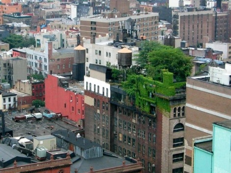 Green Roofs - Part One