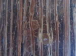 Paneling made from agricultural waste - From Field to Finishes