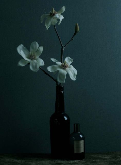 FragranceMagnolia
